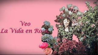 Édith Piaf - La Vie en Rose - Subtitulado al Español