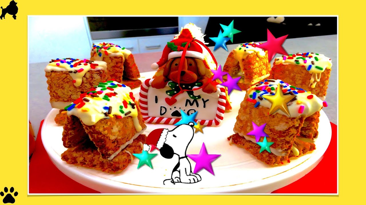christmas peanuts mini snoopy dog house xmas gingerbread house diy dog food by cooking for dogs