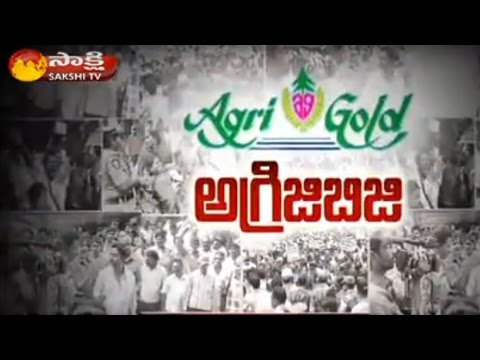 High Court Vexed at Slow Pace of Agri Gold Case || The Fourth Estate 21st December 2015