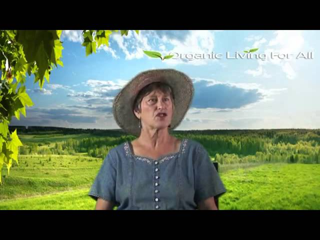 Organic Living Gardening Overview 4