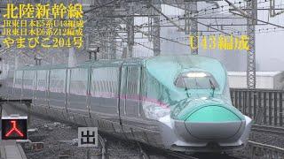 東北新幹線E5系U43編成+E6系Z12編成 やまびこ204号 大宮駅 190715 HD 1080p