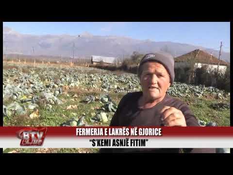 BULQIZA TV   Fermerja Gjorice