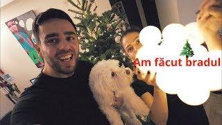 Cât ne-a costat bradul de Crăciun? (bradul, instalația și decorațiunile)
