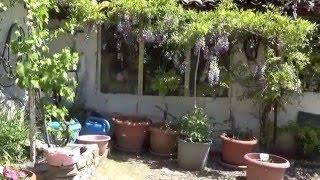 Bahçeli Ev Satılık Aydin Germencik
