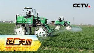 《农广天地》 20190515 乡土专家的种地经| CCTV农业