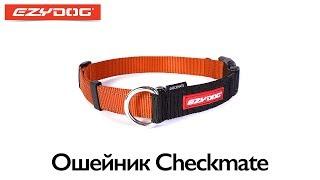 EzyDog ошейник CHECKMATE(, 2013-06-24T00:54:03.000Z)