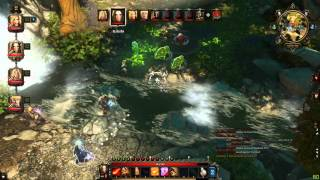 Divinity: Original Sin Enhanced - Random Battle