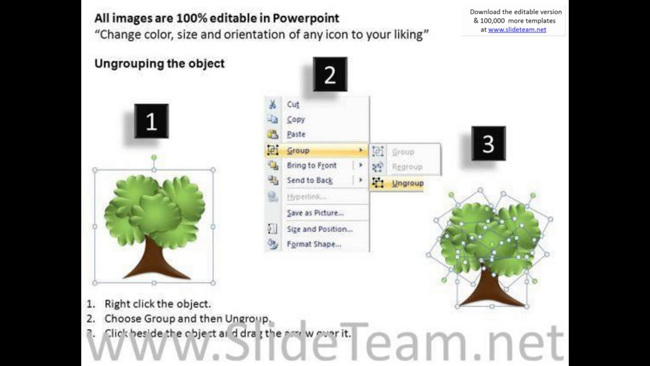 research family tree powerpoint templates presentation infographics slides