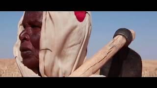 Sudan: Water Harvesting thumbnail