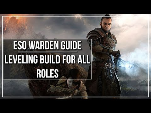 ESO Warden Leveling Build (All Roles)