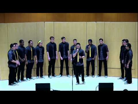 Hermonic and PLUtonic Fall Concert 2014