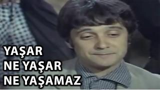 Yaşar Ne Yaşar Ne Yaşamaz - 1975 (Halit Akçatepe  Şener Şen)