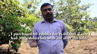 Rabbit farming in Gulbarga district