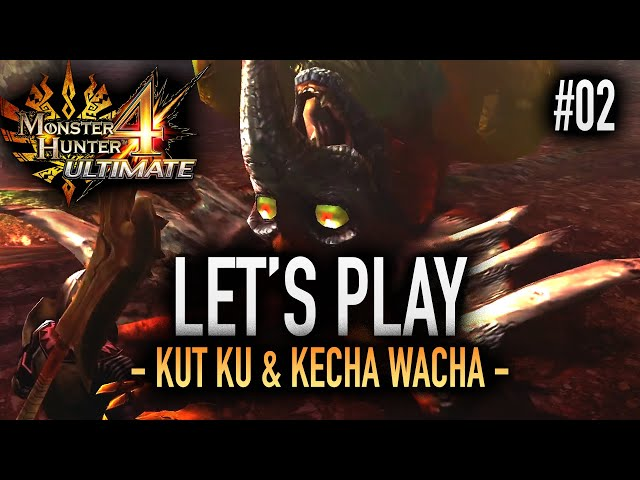 PREMIERS GRANDS MONSTRES !!! - #02 Let's Play MH4U HD