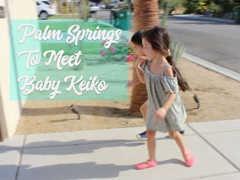 Baby Vlog 6: ROAD TRIP TO PALM SPRINGS!!!