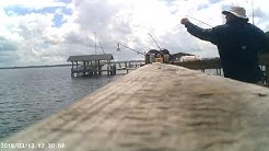 Black Creek Pier Fishing