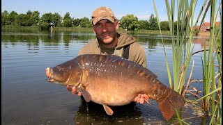 Carp fishing summer 2013 update, Woldview Syndicate, North Lincolnshire