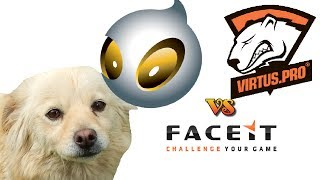 Dog Predicts Results In Cs:go, Virtus.pro-dignitas, 1-06-2014