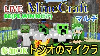 [LIVE] Minecraft(マインクラフト)BE(Win10とPEほか) 地下に植林場を作るため掘る! thumbnail