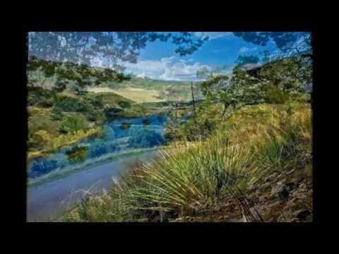 Texas Land and Ranches for sale in Bastrop County