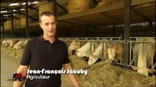 Foire de Libramont 2016 – Elevage bovin et problématique du lait (APAQ-W)