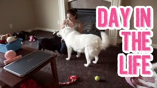 Puppy Playtime, Mommy Group & Lunch Date | Day In The Life Of A Stay At Home Pregnant Wife Ditl