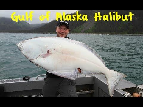 Halibut Fishing the Gulf of Alaska
