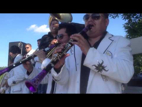 Banda la Enkantadora - El Huizache