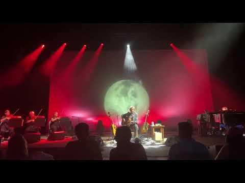 "Trey Anastasio 6/19/21 ""Wolfman's Brother"" at SPAC"