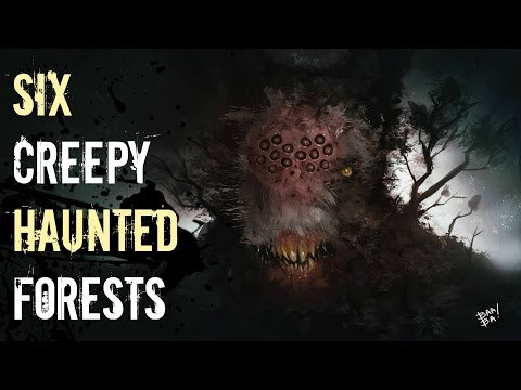 6 Most Haunted Forests You Should NEVER Visit