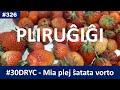Tago 2: Mia plej ŝatata esperanta vorto estas... | Esperanto-vlogo