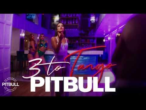 Pitbull - 3 To Tango ( Ger Dj Remix )