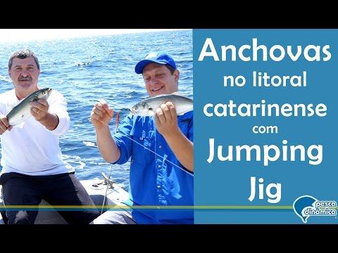 Pescaria de anchovas com jumping jig em mar aberto