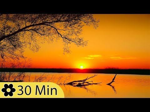 Sleeping Music, Calming, Music for Stress Relief, Relaxation Music, 30 Minute Sleep Music, ✿3242D