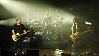Pixies - Daniel Boone - Live