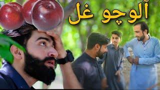 Da Alochu ghal  zindabad vines new pashto funny clip 2020