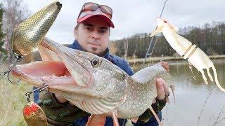 Эта рыбалка на щуку меня удивила Советский атом против европейской мыши Где живет Осетр