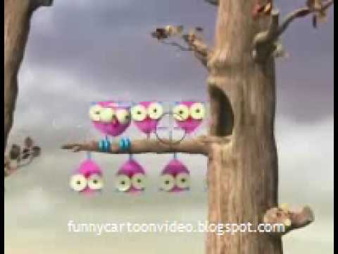 FUNNY ANIMATION THE OWL