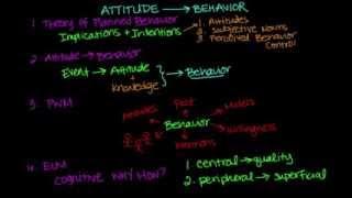 Attitude Influences Behavior
