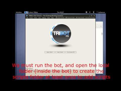 System Files Open The TRiBot_Loader.JAR File W