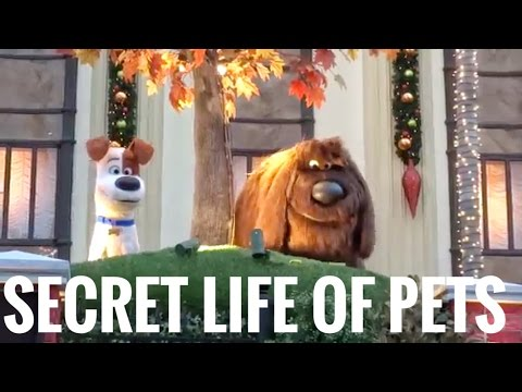 Full Universal's Superstar Parade Featuring Secret Life Of Pets Brand New Floats & Characters