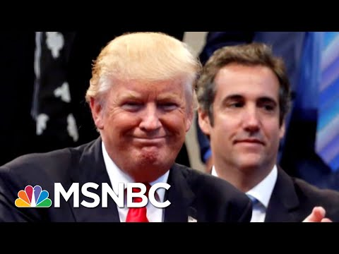What Could Be Inside 'The President Donald Trump File?' | Deadline | MSNBC