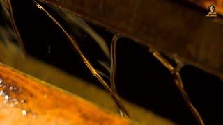видео Рапсовое масло