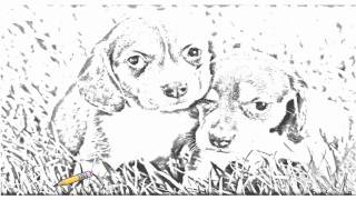 Auto Draw 2: Beagle Puppies