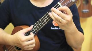 Học đàn Ukulele Bài 3 - Giới thiệu các điệu đệm hát cơ bản