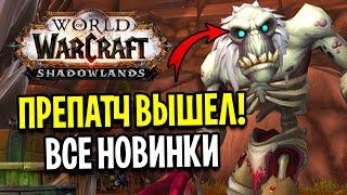 ПРЕПАТЧ ВЫШЕЛ! ВСЕ НОВИНКИ С ПЕРВЫХ УСТ! WoW: Shadowlands
