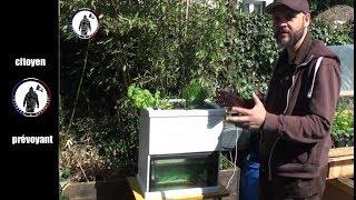 Baixar Visite du jardin en permaculture de Nicolas au début de printemps