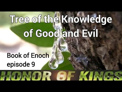 Tree of the Knowledge of Good and Evil - Book of Enoch - Episode 9