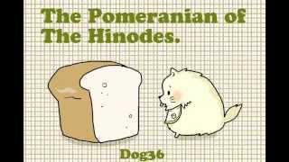 Pomeranian And Bakery