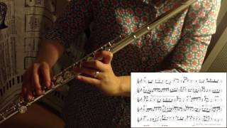 Moon River(Hans Ulrik) - jazz flute cover with score